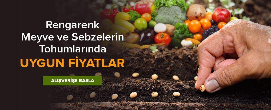Uygun Fiyatlı Tohum Ürünleri Bahçenizde
