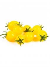 Sarı Cherry Saksı Domates Tohumu 5 Tohum + Süpriz Tohum