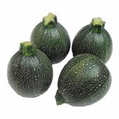 Yeşil Dolmalık Kabak Tohumu 5 Tohum + Süpriz Hediye