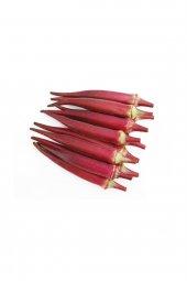 Nadir İthal Kırmızı Bamya Tohumu 5 Tohum + Süpriz Hediye Tohum