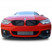 Bmw 4 Serisi F32 Coupe M Performance Ön Lip