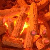 Prado Firebrand İthal Briket Mangal Kömürü 10kg-3