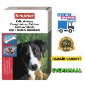 Beaphar Kalktabletten Calcium Kalsiyum Tablet 180 ...