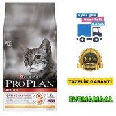Pro Plan Yetişkin Tavuklu Kedi Maması 10 Kg