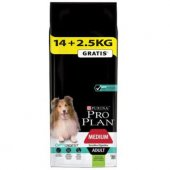 Pro Plan Adult Digestion Lamb Kuzu Etli Köpek Mama 14 + 2.5 Kg