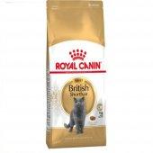 Royal Canin British Shorthair Özel Irk Kedi...