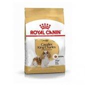 Cavalier King Charles Cinsi Köpek Maması Royal Canin 3 Kg-2