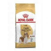 Cavalier King Charles Cinsi Köpek Maması Royal Canin 3 Kg