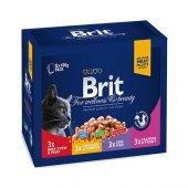Kediler İçin Brit Kedi Konservesi Karışık Etli Kedi Maması 12x100gr