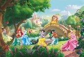 8-478 Komar Princess (Prenses) Çocuk Odası Duvar Kağıdı