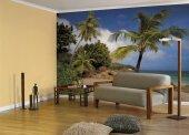 Komar 8 885 Palmiyeli Kumsal Deniz Duvar Kağıdı...