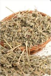 Çoban Çökerten (Demir Dikeni) Tribilus Terrestris 50 gr