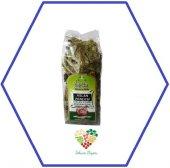 Ilayda Aslan Pençesi Otu Paket Bitki