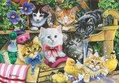 Puzzle 260 Parça Banyo Zamanı Bathtime Kittens