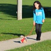 My Puppy Parade Yürüyen Köpeğim Charlie-3