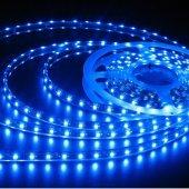şerit Led 3 Çipli Smd Silikonlu 5 Metre 12v Mavi