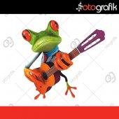 Otografik Gitarist Kurbağa Renkli Oto Stıcker