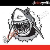 Otografik Köpek Balığı 4 Renkli Oto Stıcker