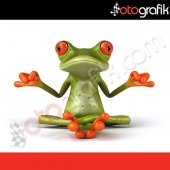 Otografik Yoga Yapan Kurbağa Renkli Oto Stıcker