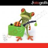 Otografik Benzinci Kurbağa Renkli Oto Stıcker