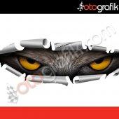 Otografik Gizlenen Şahin Gözleri Renkli Oto Stıcker