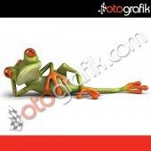 Otografik Tembel Kurbağa Renkli Oto Stıcker
