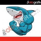 Otografik Vücutçu Köpekbalığı Renkli Oto Stıcker