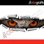 Otografik Gizlenen Baykuş Gözleri 3d Oto Sticker