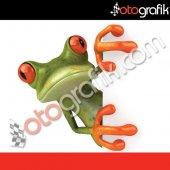 Otografik Camdan Bakan Kurbağa 3d Stıcker