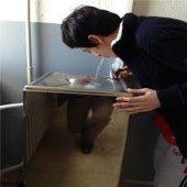 Okul Tipi Su Sebili Pınarmatik S 100