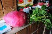 Süper Paket 150 Tohum İthal Dev Endonezya Jawa Adası Turp Tohumu-2