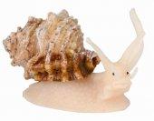Kabuklu Deniz Canlıları 10cm