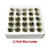 electroon Mini Lamba 2,5volt - 100 Adet - Kargo Ücretsiz-4