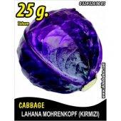 Lahana Tohumu Mohrenkopf (Kırmızı) 25 G...