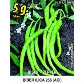 Biber Tohumu Ilıca 256 Acı Sivri 5 G. (Takribi 400 Tohum)