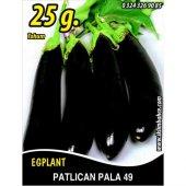 Patlıcan Tohumu Pala 49 25g (Takribi 3250 Tohum)