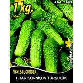 Hıyar Tohumu Salatalık Kornişon Turşuluk 1 Kg