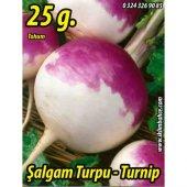 şalgam Turpu Tohumu 25 G. (Takribi 2250 Tohum)