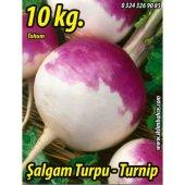şalgam Tohumu Turpu 10 Kg