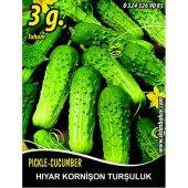 Hıyar Tohumu Salatalık Kornişon Turşuluk 3 G...