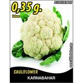 Karnabahar Tohumu Igloo 0,35 G (Takribi 60 Tohum)