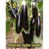 Patlıcan Tohumu Aydın Siyahı 55 5g (Takribi 650 Tohum)