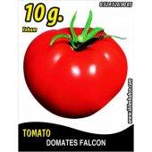 Domates Tohumu Falcon 10 G. (Takribi 1500 Tohum)