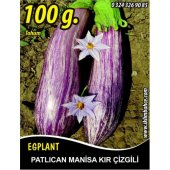 Patlıcan Tohumu Manisa (Kır) 100 G.