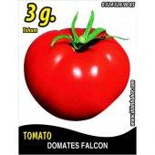 Domates Tohumu Falcon 3 G (Takribi 450 Tohum)