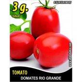Domates Tohumu Rio Grande 3 G (Takribi 450 Tohum)