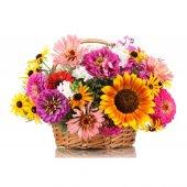 çiçek Tohumu Rastgele Bir Çeşitten Bir Paket
