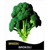 Brokoli Tohumu Monet 10g (Takribi 2.000 Tohum)