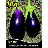 Patlıcan Tohumu Adana Dolmalık 10 G (Takribi 1350 Tohum)