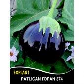 Patlıcan Tohumu Topan 374 5g (Takribi 650 Tohum)